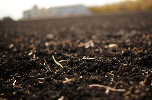 Does changing climate change soils axis seed for Soil 4 climate